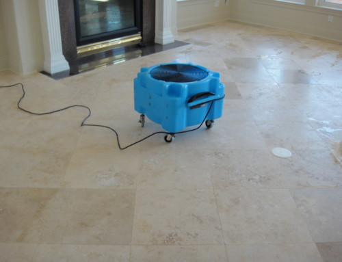 Tile Cleaning Picture