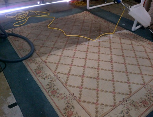 Rug Cleaning Pictures