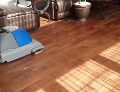 Hardwood Floor Pictures