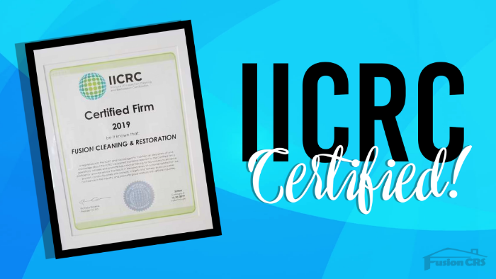 IICRC Cerfiied Carpet Cleaning Services